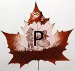 Изображение буквы «Р»
