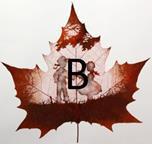 Изображение буквы «В»