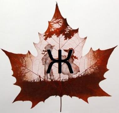 Изображение буквы «Ж»